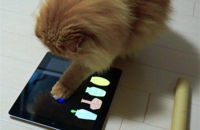 CATouch!:PC操作を用いた双方向型猫じゃらし