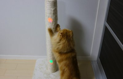 sCrATch: 爪とぎ行動を促進する爪とぎタワー