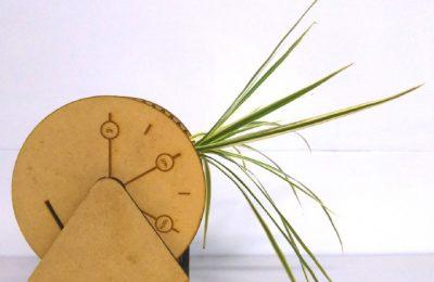 植物に関する普遍的な知識を利用した情報伝達